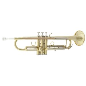 dolphin-trompet