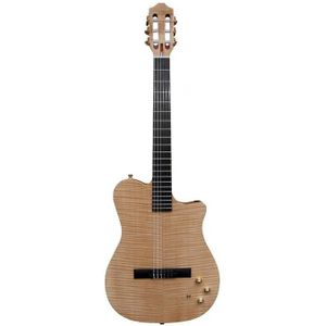 carvin-ns1
