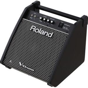ROLAND-PM100